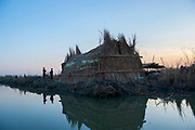 The Marsh Arabs are entirely self-sufficient, often living without electricity or government support, traditional lively hoods of fishing, gathering reeds and raising livestock go back thousands of years.
