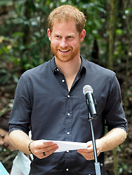 The Duke of Sussex visits the K'gari rainforest on Fraser Island, Australia. The Duke unveiled a plaque for the dedication of the forests to the Queen's Commonwealth Canopy. The proud Duke even folded up the material that was covering the plaque before watching traditional dances by the Butchulla people.<br />