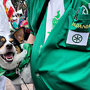 VENICE, ITALY - SEPTEMBER 18:  A supporter of the separatist party Lega Nord is seen with his dog in Venice for the annual political rally  on September 18, 2011 in Venice, Italy. The Northern League rally is held to call for the independence of Northern Italy, during which the leader of Lega Nord pours water from the River Po in the north of Italy into the Venetian Lagoon as a symbolic rite known as Rito dell'ampolla.