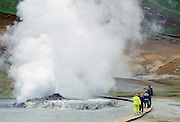 Hot geisers in Iceland