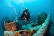 Diver at a shipwreck at Ras Mohammed National Park, Red Sea, Sinai, Egypt,