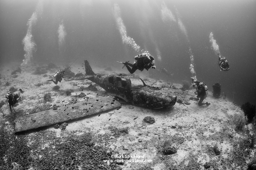 Divers explore the wreck of a Cessna airplane, sunk as an artificial reef. Moalboal, Visayan Sea, Philippines, Pacific Ocean