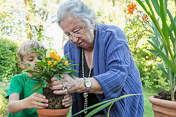 Grandmother repotting plant with her grandson