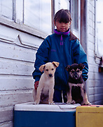 Daniel Hansen with puppies, village of Angoon, Admiralty Island, Alaska.<br /> Please note: Use of this photo requires a small extra model fee be paid to Daniel Hansen, the child in the photo. Please contact Fred Hirschmann for details. Thank you.