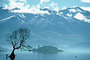 A silhouetted tree at Lake Wanaka with Mount Aspiring National Park in the distance on the 1st June 2003 in Wanaka in New Zealand. Mount Aspiring National Park is in the Southern Alps of the South Island of New Zealand. Shot on 35mm negative