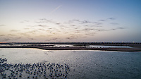 Aerial view of Flamingos in Al qudra lakes in the middle of the Saih Al Salam Desert in Dubai at sunset, UAE.
