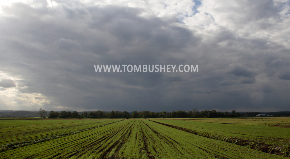 Goshen, New York - Clouds over farm fields in the Black Dirt region of Orange County on May 8, 2010.