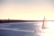 Sailing on the Pacific Ocean at Sunset in Marina Del Rey Los Angeles