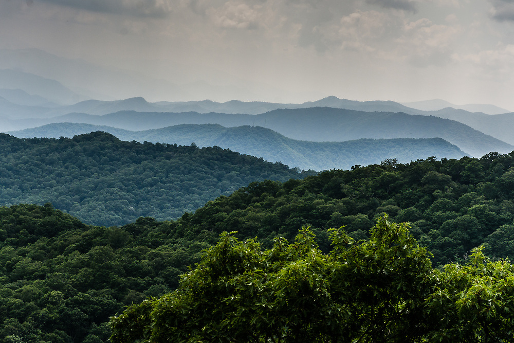 Back to the Blue Ridge Parkway