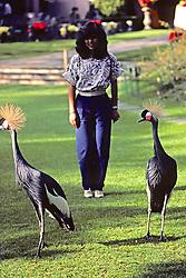 Belinda Villarreal With Grey Crowned Crane