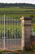 vineyard les epenots pommard cote de beaune burgundy france