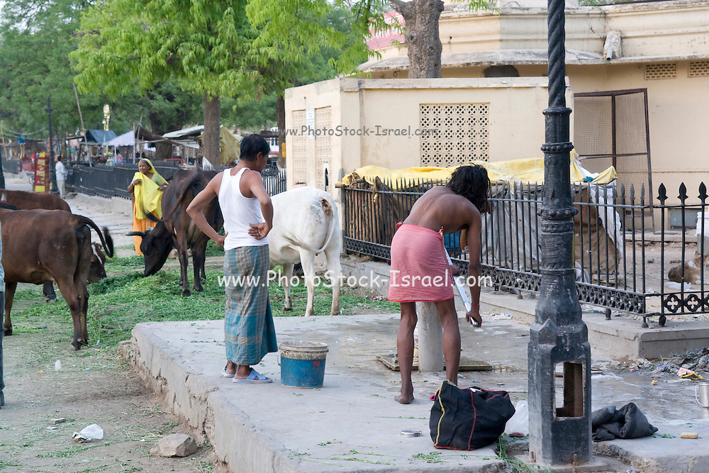 India, Rajasthan, Jaipur city centre local people