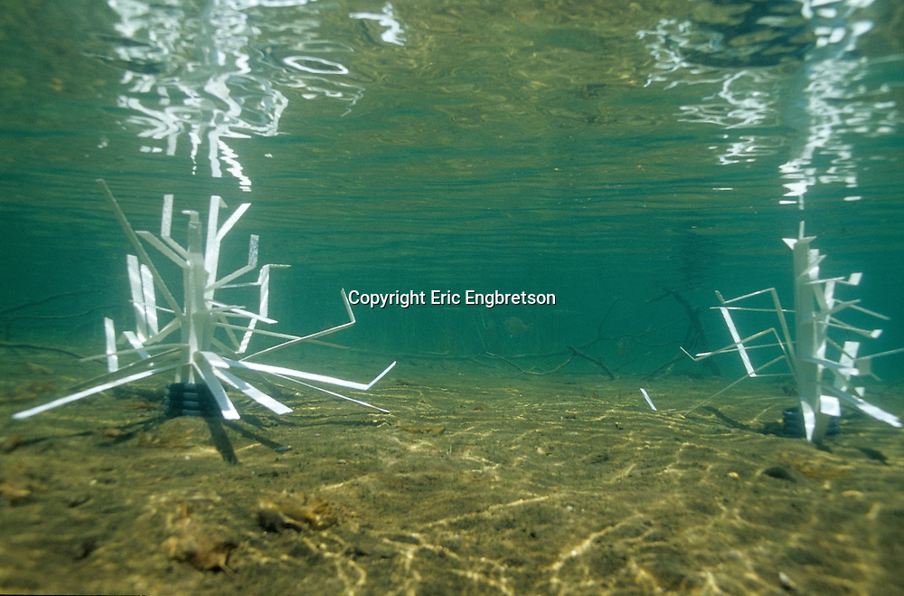 Fishiding Structures (cradle model) after being placed in shallow water.<br /> <br /> ENGBRETSON UNDERWATER PHOTO