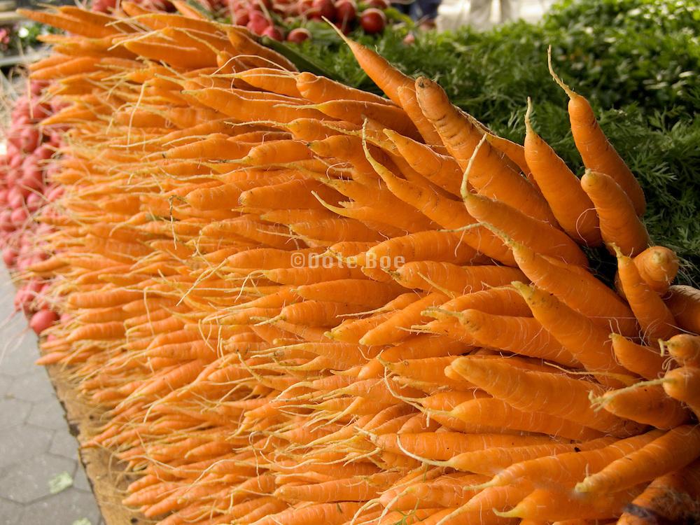 organic carrots displayed at a green market