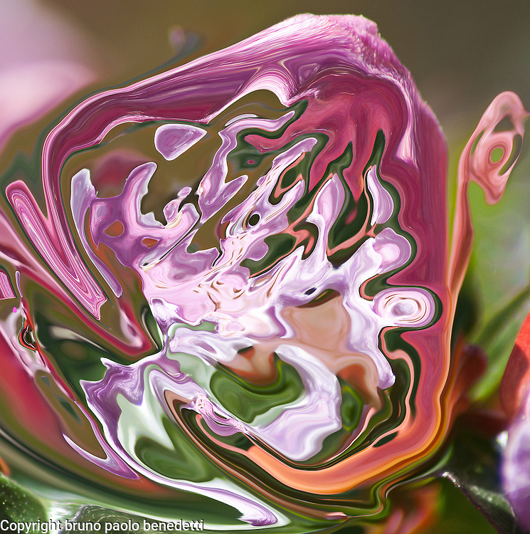 abstract violet fluid shape with lilac shades inside on blurred green background