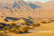 62945-00303 Sand Dunes in Death Valley Natl Park CA