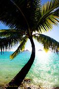 Mokulua Islands, Lanaikai, Oahu, Hawaii