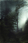 Man standing in a dense forest - manipulated photograph