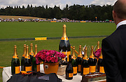 Champagne, Veuve Clicquot gold Cup, Polo at Cowdray, 18 July 2004. SUPPLIED FOR ONE-TIME USE ONLY> DO NOT ARCHIVE. © Copyright Photograph by Dafydd Jones 66 Stockwell Park Rd. London SW9 0DA Tel 020 7733 0108 www.dafjones.com