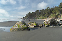 Kalaloch Beach Olympic National Park Washington