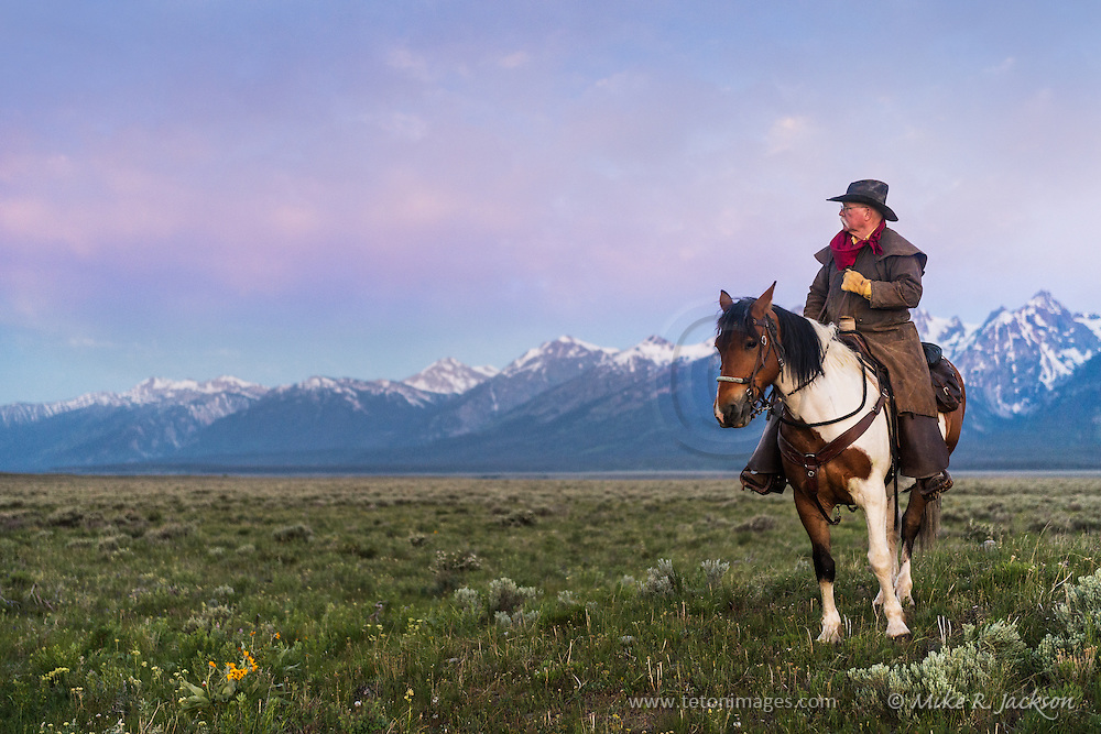 Wrangler surveying the valley floor with purple mountains and pink morning light in Jackson Hole, WY.