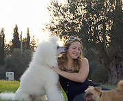 standard white poodle licking female owner