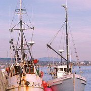 Two fishing trawlers tied up to a dock in Rockland, Maine