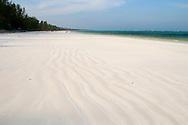 Fine white sand and palm trees on Matemwe Beach.  Zanzibar, Tanzania