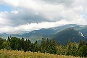 Landscape View, Bucegi Mountains, Romania, pine forest,