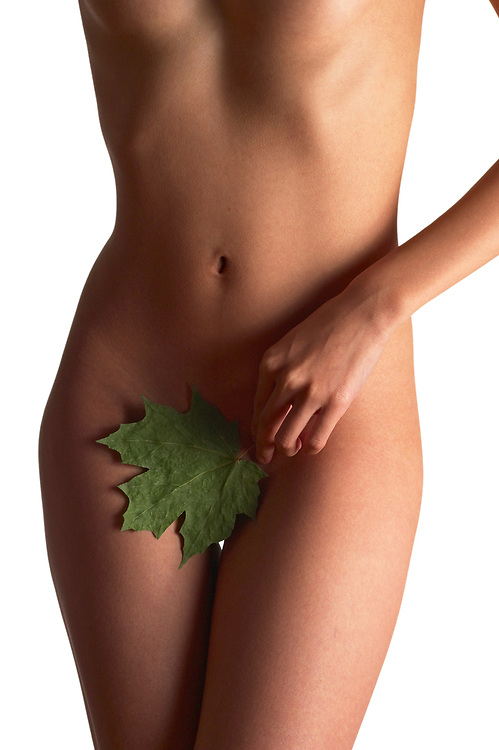 Woman's nude torso with maple leaf covering pubic area