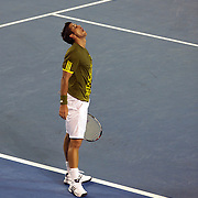 Fernando Verdasco  of Spain in action against Rafael Nadal of Spain during  a five set thriiler in the Men's Semi Final at the Australian Tennis Open on January 30, 2009 in Melbourne, Australia. Photo Tim Clayton    .