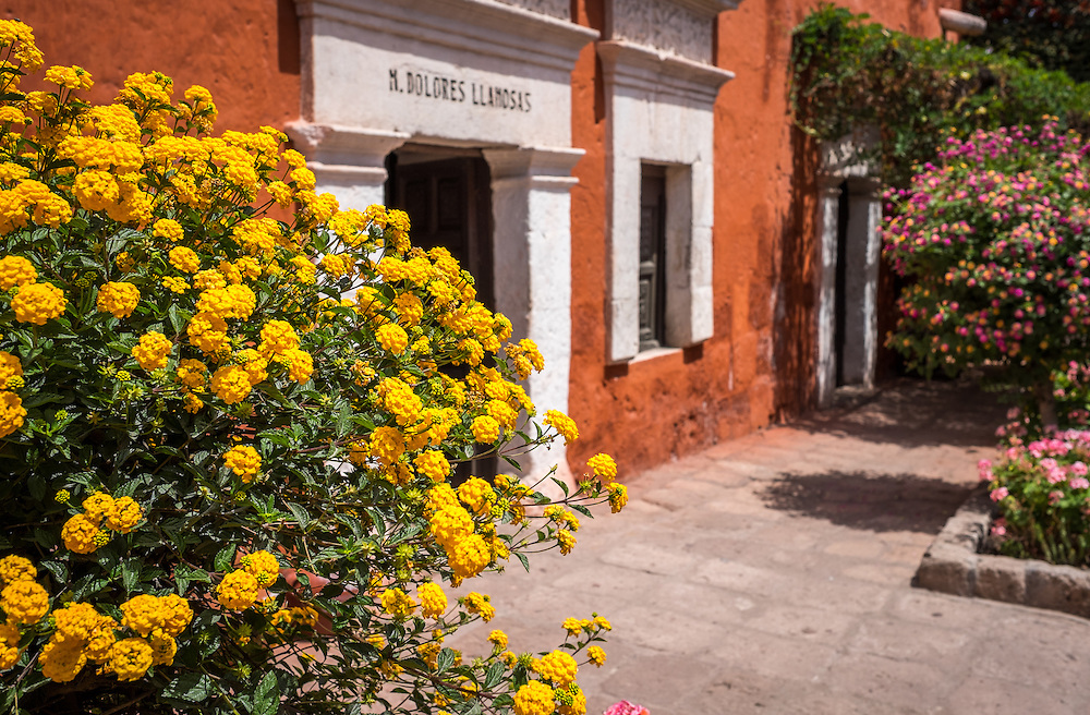 AREQUIPA, PERU - CIRCA APRIL 2014: View of flowers in the interior of the Santa Catalina Monastery in  Arequipa. Arequipa is the Second city of Perú by population with 861,145 inhabitants and is the second most industrialized and commercial city of Peru.
