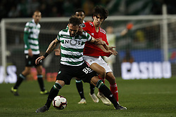 February 3, 2019 - Lisbon, Portugal - Nemanja Gudelj of Sporting (L) vies for the ball with Joao Felix of Benfica (R)  during Primeira Liga 2018/19 match between Sporting CP vs Moreirense FC, in Lisbon, on February 3, 2019. (Credit Image: © Carlos Palma/NurPhoto via ZUMA Press)