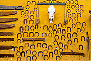 A colorful wall decorated with old horse shoes and cattle skull in the Barrio Antiguo or Spanish Quarter neighborhood adjacent to the Macroplaza Grand Plaza in Monterrey, Nuevo Leon, Mexico.