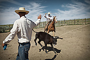 "Daily cowboy chores. Cowboy life at and around the Spanish Ranch, near Elko in Nevada. These cowboys run a wagon every year for a couple of months: taking a motorized wagon several hours away from the ranch, to set up camp and watch over their cattle during summer...A 4-weeks road trip across the USA, from New York to San Francisco, on the steps of Jack Kerouac's famous book ""On the Road"".  Focusing on nomadic America: people that live on the move across the US, out of ideology or for work reasons."