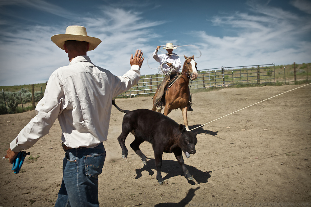 """Daily cowboy chores. Cowboy life at and around the Spanish Ranch, near Elko in Nevada. These cowboys run a wagon every year for a couple of months: taking a motorized wagon several hours away from the ranch, to set up camp and watch over their cattle during summer...A 4-weeks road trip across the USA, from New York to San Francisco, on the steps of Jack Kerouac's famous book """"On the Road"""".  Focusing on nomadic America: people that live on the move across the US, out of ideology or for work reasons."""