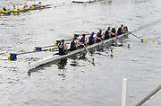 Henley Royal Regatta, Henley on Thames, Oxfordshire, 28 June - 2 July 2017.  Saturday  12:28:24   01/07/2017  [Mandatory Credit/Intersport Images]<br /> <br /> Rowing, Henley Reach, Henley Royal Regatta.<br /> <br /> The Temple Challenge Cup<br />  University of California, Berkeley, U.S.A.