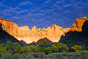 Dawn light on the Towers of the Virgin, Zion National Park, Utah