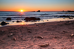 Elephant Seals enjoying the last minutes of sun as the sun sets on Piedras Blancas Light  Lighthouse North of San Simeon, CA.