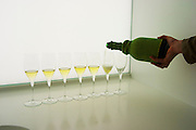 Analytical wine tasting in a neutral white environment a white desk a sink and a backlit white screen with a line of champagne glasses some of the filled with wine a person holding a concealed wine bottle in the hand and filling up one of the glasses at the Maison de la Champagne (the House of the Champagne Region), the head quarters of CIVC (Comite Interprofessionnel du Vin de Champagne) in Epernay, Champagne, Marne, Ardennes, France