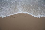 Serene, Sagg Main Beach, Sagaponack, Long Island, NY