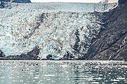 Sea otters and harbor seals rest on ice floes calved from the massive face of Barry Glacier, a tidewater glacier in Barry Arm, Harriman Fjord, Prince William Sound near Whittier, Alaska.