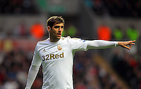 Saturday, 03 November 2012..Pictured: Danny Graham of Swansea..Re: Barclays Premier League, Swansea City FC v Chelsea at the Liberty Stadium, south Wales.