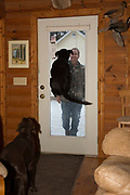 Renowned dog trainer Tom Dokken's own Labrador, Chase, literally jumps for joy as Tom comes home.