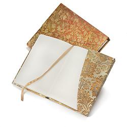 writing diary blank