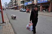 JIANHU, CHINA - APRIL 11: (CHINA OUT) <br /> <br /> 61kg Pet Pig In Jiangsu<br /> <br /> 74-year-old Tao Liqin walks with her pet pig, 61kg in weight, on April 11, 2014 in Jianhu, Jiangsu Province of China. Tao's granddaughter spent 700 yuan (106 USD) to buy the pet pig, who was 1kg in weight, online last year. And it suddenly started to grow after being castrated. ©Exclusivepix