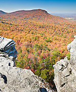 From atop Hanging Rock, you can view across a sea of autumn orange and red foliage to Moore's Wall, at Hanging Rock State Park in Stokes County, North Carolina, USA. (Panorama stitched from 2 images.) The eroded quartzite knob called Hanging Rock rises to 2150 feet elevation. The park is 30 miles (48 km) north of Winston-Salem, and approximately 2 miles (3.2 km) from Danbury. Hanging Rock State Park is located in the Sauratown Mountain Range, which is made up of monadnocks (or inselbergs, isolated hills) that are separated from the nearby Blue Ridge Mountains. Prominent peaks in the Sauratown range rise from 1,700 feet (520 m) to more than 2,500 feet (760 m) in elevation and stand in contrast to the surrounding countryside, which averages only 800 feet (240 m) in elevation. Named for the Saura Native Americans who were early inhabitants of the region, the Sauratown Mountains are the erosion-resistant quartzite remnants of mountains pushed up between 250 and 500 million years ago. Stitched from 2 overlapping photos.