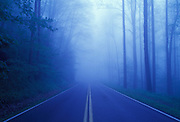 Image of a road in fog at Great Smokey Mountain National Park, Tennessee, American east coast by Randy Wells