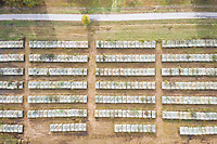 Aerial view above of old war tanks line up, Italy.