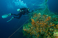 Divers Kevan Mantell and Alan Chung work to remove abandonned longline tangled on a rocky seamount in the National Park<br /><br />Coiba Island<br />Coiba National Park<br />Panama<br /><br />Siren's Point dive site